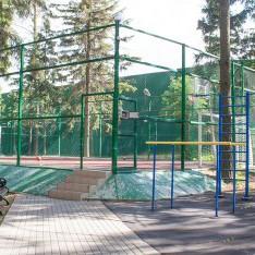 Спортивная площадка, поселок таунхаусов Елочка