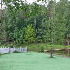 Зона для шезлонгов у озера для жителей КП Елочка